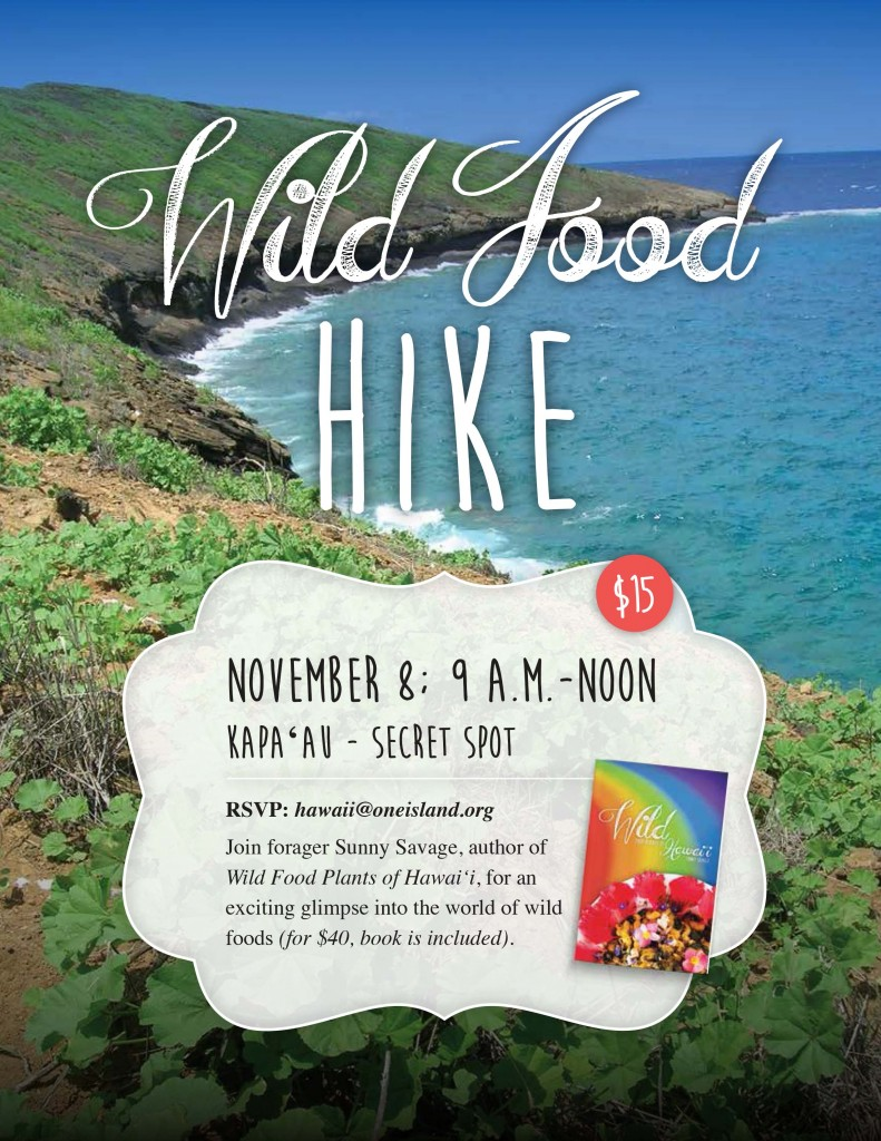 General Flyer Hike Nov8