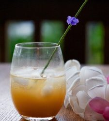 Kiawe Nectar & Gum (Prosopis pallida)