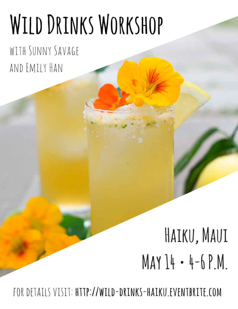 Wild Drinks Workshop with Sunny Savage & Emily Han